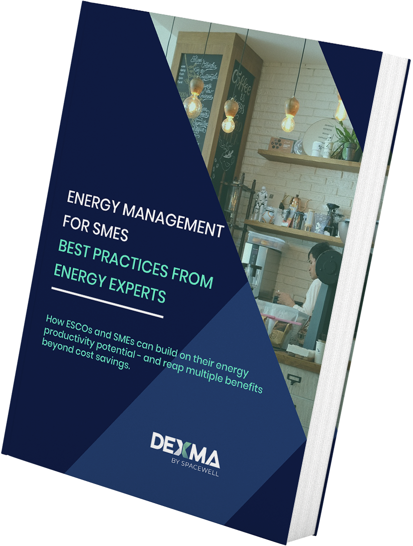 Energy Management for SMEs